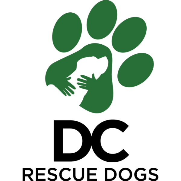 DC Rescue Dogs | Supporting Rescue Dogs | PupPost