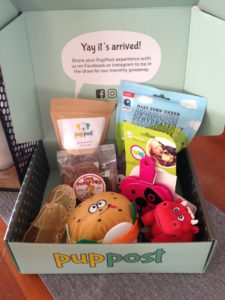 PupPost | Toys and Treat Subscription Box | Buy Online