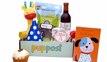 Birthday Box | PupPost | Toys and Treat Subscription Box | Buy Online