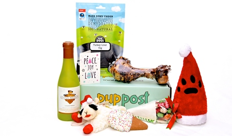 Santa Paws Santa Paws Box | PupPost | Toys and Treat Subscription Box | Buy OnlineBox-PupPost